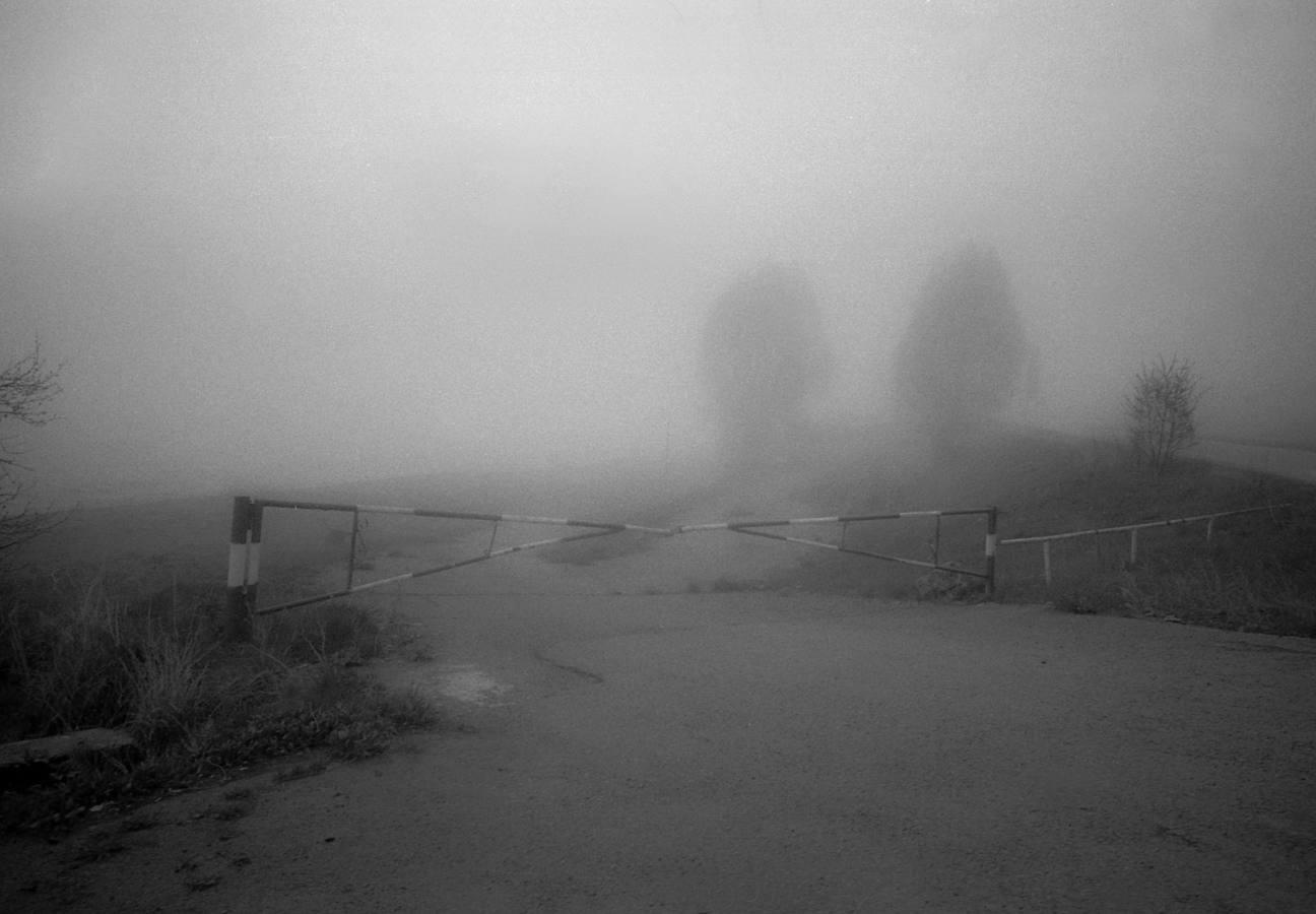 © Alina Tarabarinova / Georgia / 2013